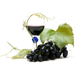 Resveratrol - Nature's Little Secret...